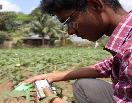 农作物营养缺乏传感器。