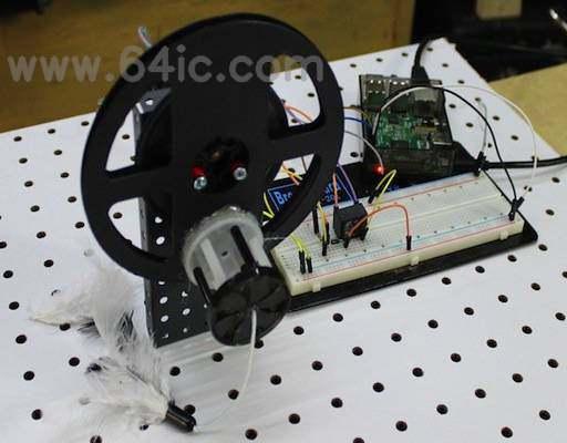 如何用树莓派、LDR和直流电动机制造猫玩具?